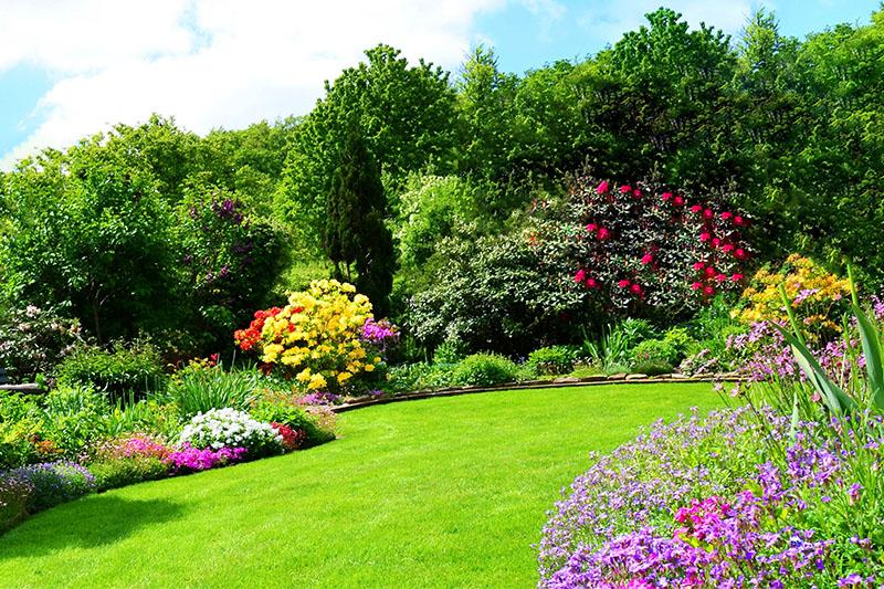 Lawn & Garden Care | OK Meridian | Vernon, British Columbia
